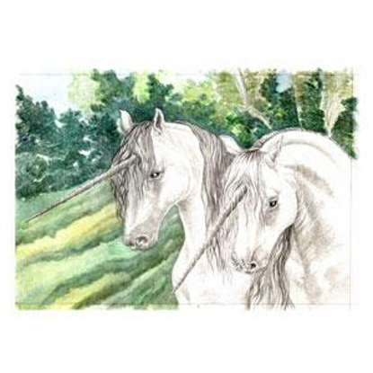 Picture of Unicorns
